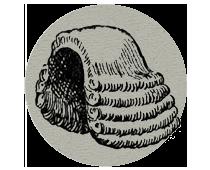 icon-wig